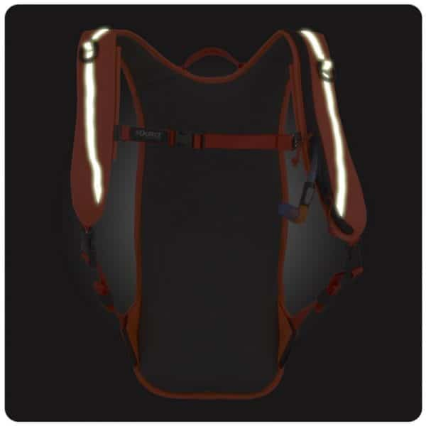 iVis Firefly 2L Hydration pack back glow