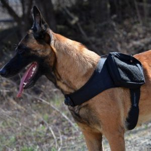 patrol harness